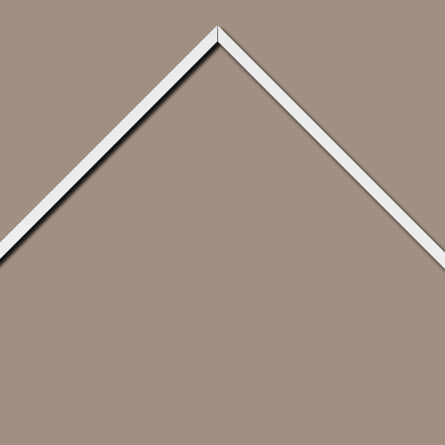 Baguette aluminium profil plat largeur 1cm couleur blanc satiné (mise en place du sujet très rapide et très simple,sans démontage du cadre car angles sertis ) encadrement livré monté prêt à l'emploi (cadre fabriqué à vos mesures dans nos ateliers de besançon)