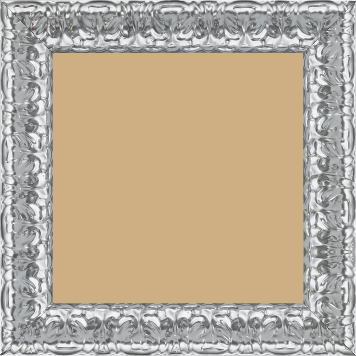 Cadre  bois argent — 25 x 25
