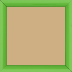Cadre bois profil méplat largeur 2.3cm couleur vert tonique laqué - 40x40