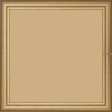 Cadre bois profil bombé largeur 2cm couleur or - 28x34